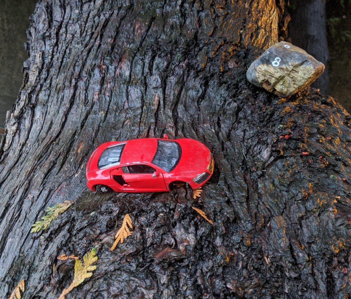 little red car, little rock