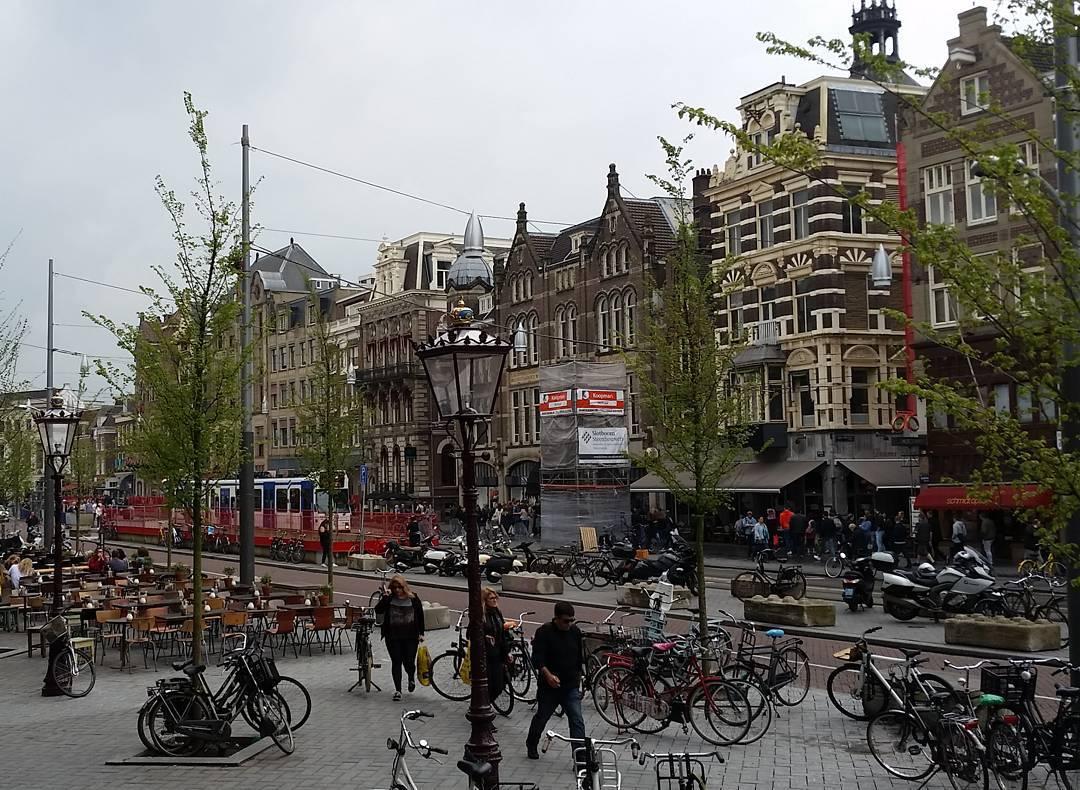 A busy Amsterdam street