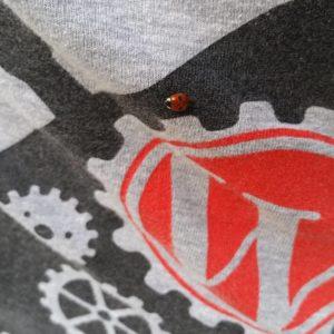 ladybug on a WordPress t-shirt
