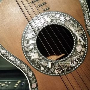 a guitar-like instrument