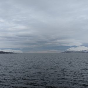 Up the fjord
