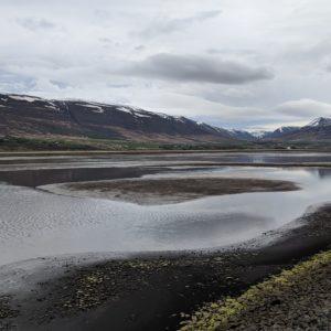low tide fjord