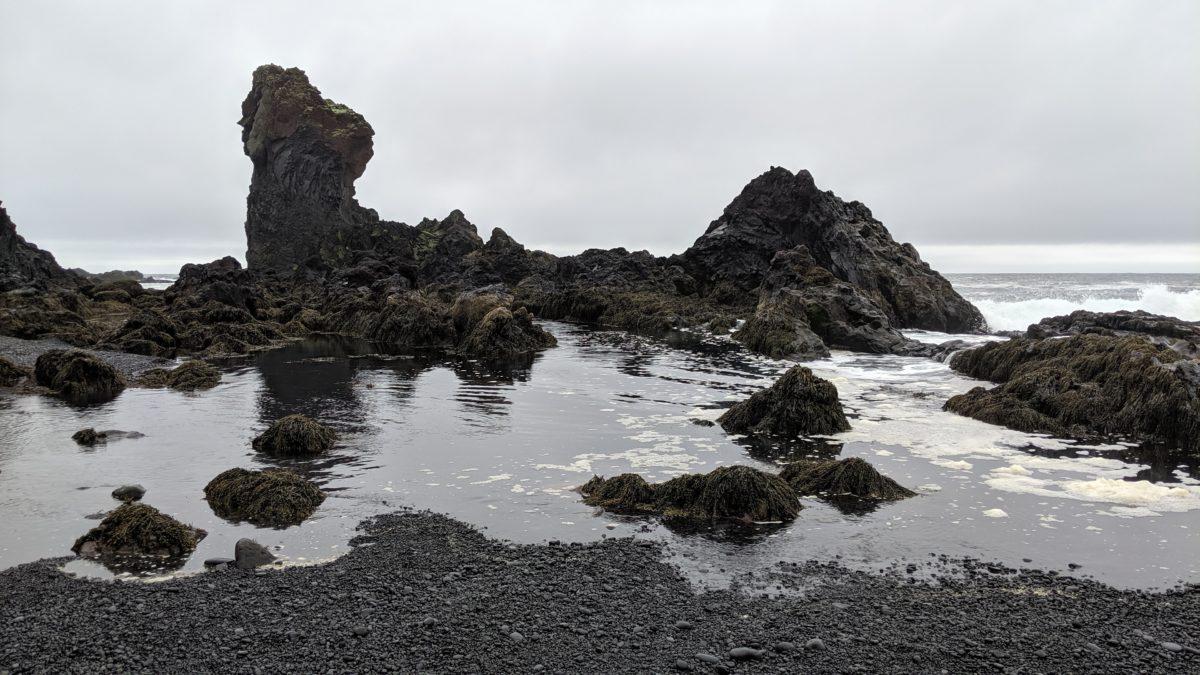 rocky tide pool