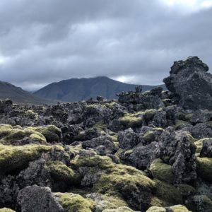 lava and moss