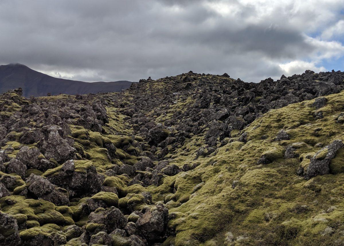 more green lava fields