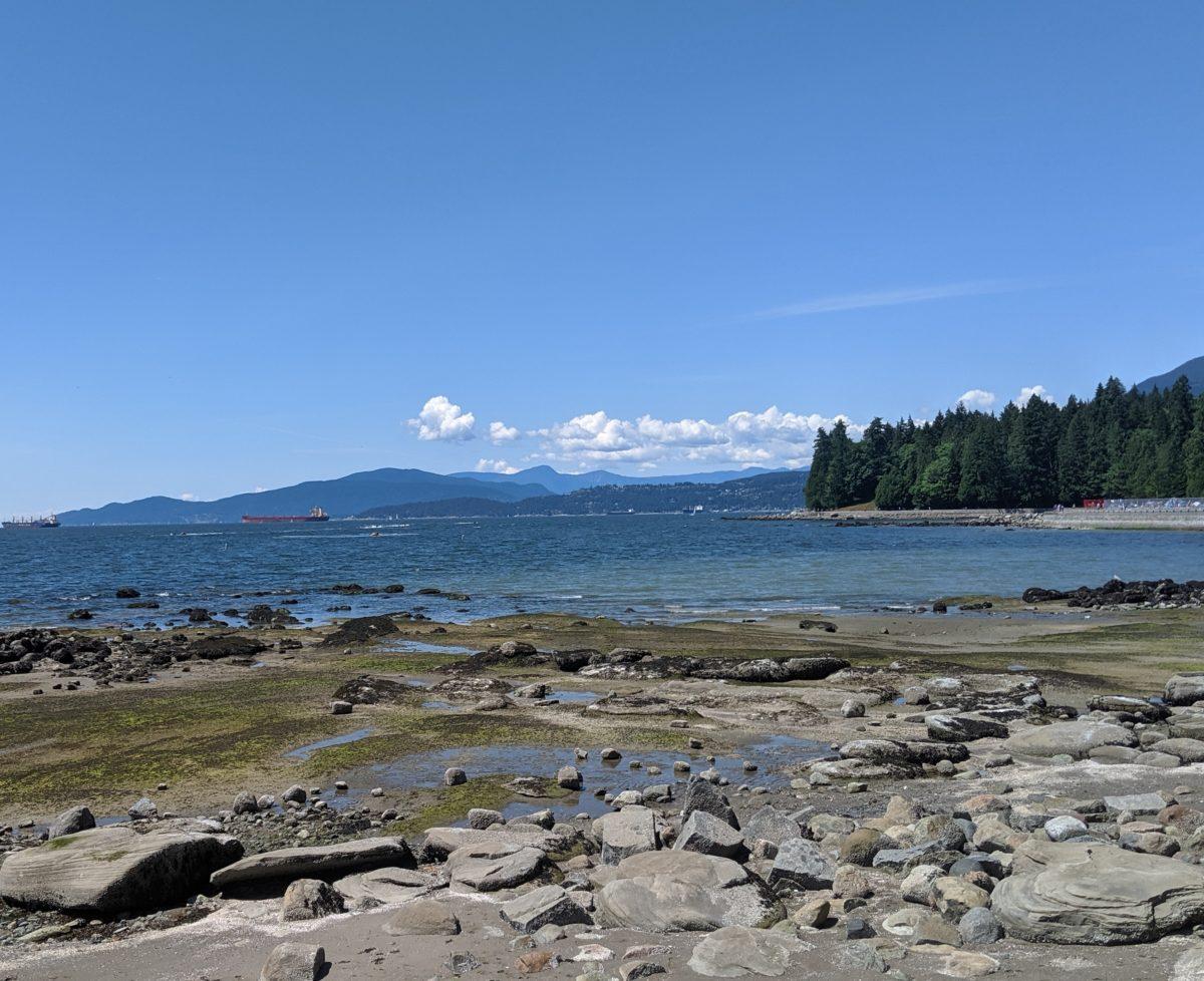 low tide near Third Beach