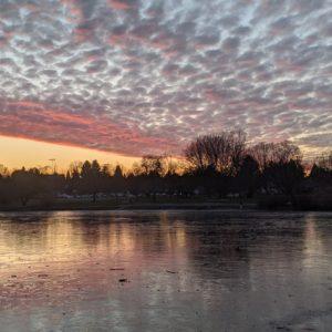 Frozen Trout Lake