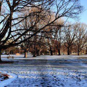 Dow's Lake park