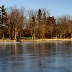 frozen Dow's Lake