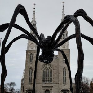 Spider and church