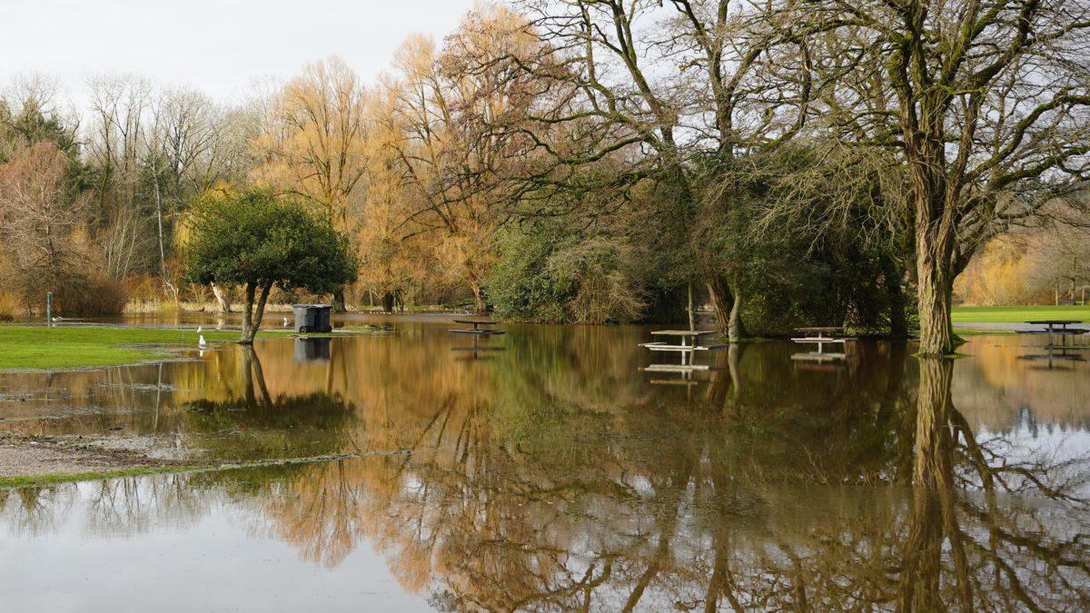 Jericho Park underwater