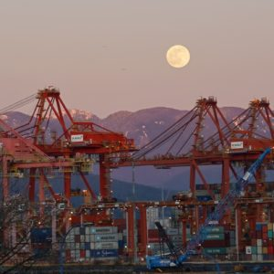 Cranes and full moon
