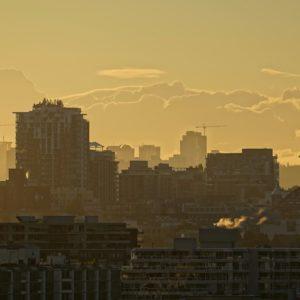 Framed morning gold