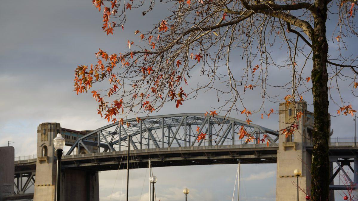 Burrard Bridge, leaves