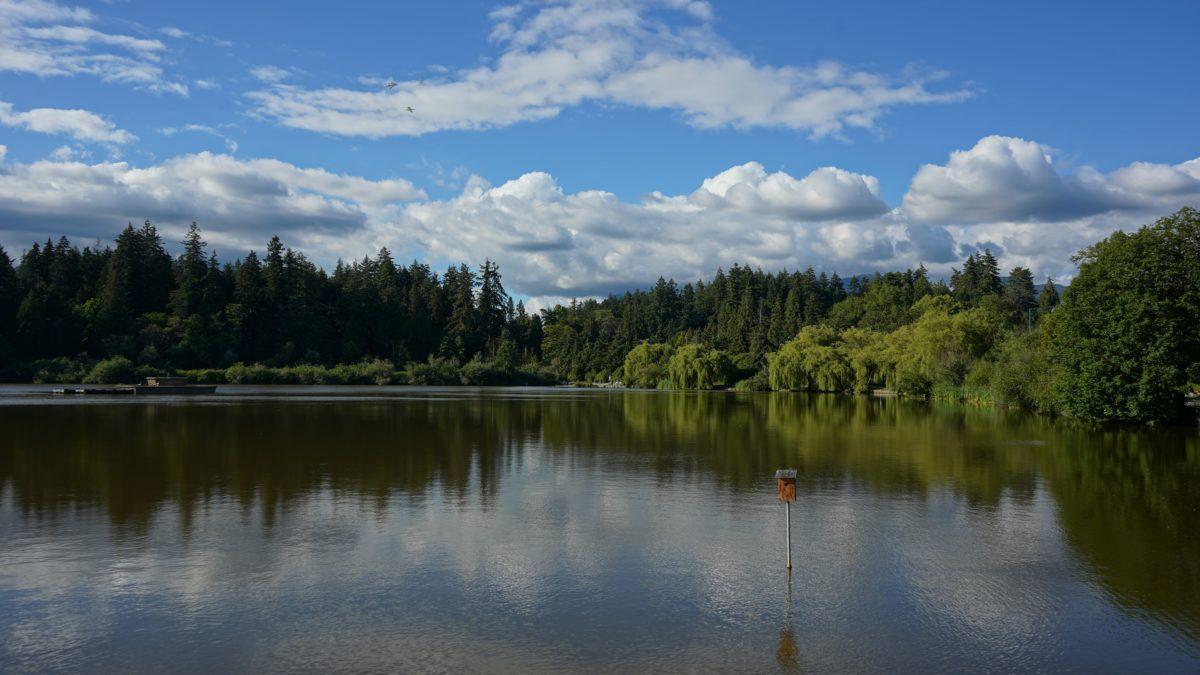 Lost Lagoon reflected