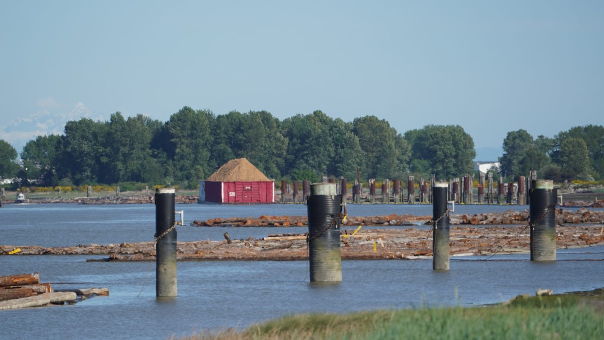 Pilings and barge