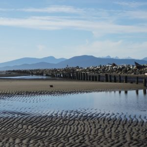 Jetty and rippled sand