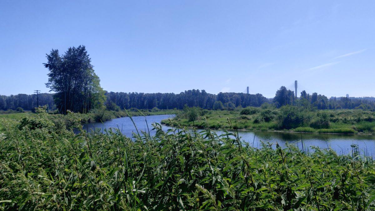 Colony Farm scenery